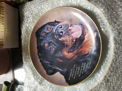 Rottweiler collector plates by the Danbury Mint