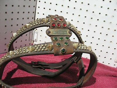 Antique Dog Collar, Dog Harnes, Linn County OR, 1930