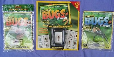 Real Life Bugs & Insects x3 All Brand New In Original Packets all with Magazines