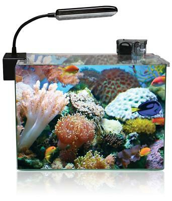 Aquatic Nature Cocoon LED Nano Aquarium-Set Cocoon LED 6 (31,2 L)