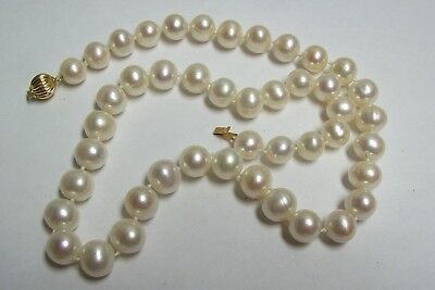 59c07a21476a6 GORGEOUS SOUTH SEA ? Large Pearls Necklace 14kt Clasp