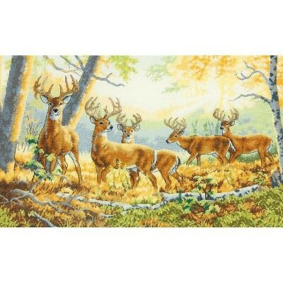 DIMENSIONS  GOLD COLLECTIONS  *SUMMRS END*CROSS STITCH KIT  Kreuzstich-Stickpack