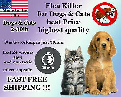 50 Capsules Instant Flea Killer Control small Dogs or Cats 2-30lb prevention NEW