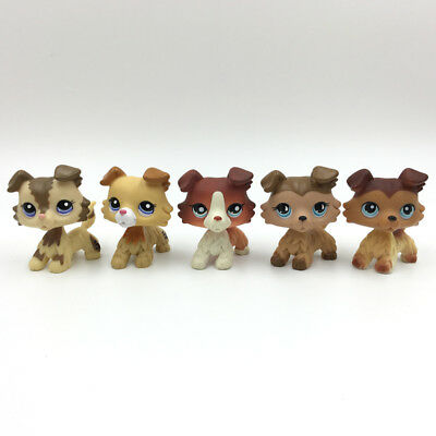 5pcs littlest pet shop dogs LPS toy set Collie lot 2210 2452 1542 893 58