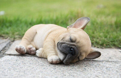 Lying Down Sleeping French Bulldog Puppy - Life Like Figurine Statue Home Garden