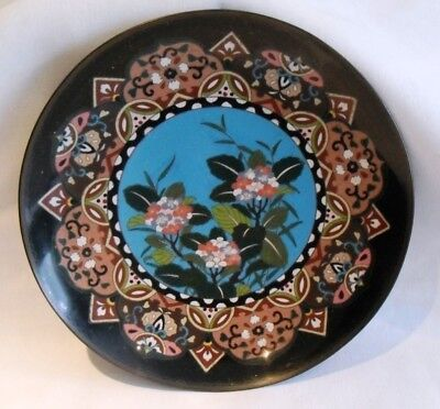 Old Japanese / Chinese Cloisonne Charger Plate Dish Meiji period Flower Blossom