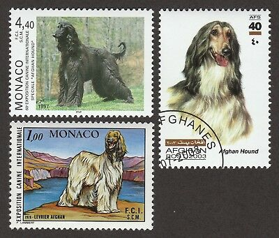 AFGHAN HOUND** Int'l Dog Stamp Collection ** Great Gift Idea*