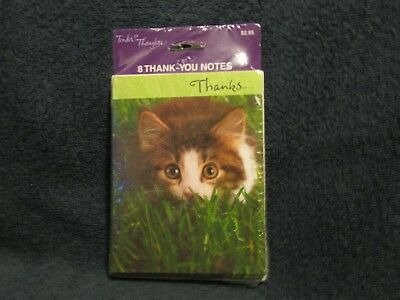 8 pk KITTEN Thank You cards by Tender Thoughts Greetings NIP cat theme card