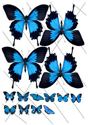 BUT-CUT-SAVE Transparent Butterfly Sheets - Mixed Ulysses