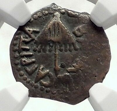 Herod AGRIPPA I JERUSALEM Biblical Claudius Time Ancient Greek Coin NGC i70595