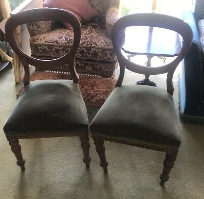 A PAIR of BALLOON BACK DINING CHAIRS - TLC Project