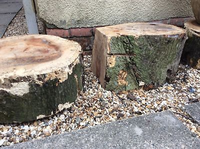 (36) Pair Large Log Slice Plinth Garden Feature Stool Seat Stand Size D38 cm H16
