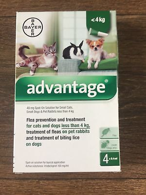 Advantage 40mg Flea Treatment for Cats and Dogs under 4 kg
