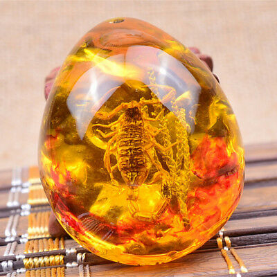 1Pc Fashion Insect Stone Scorpions Inclusion Amber Baltic Pendant Necklace GS