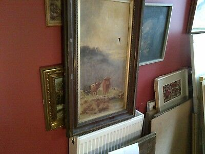 Fine Late 19th c, Large Scottish School Oil on Canvas . Highland Cattle Study.