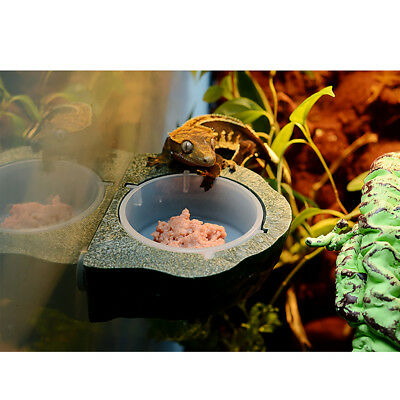 Magnetic Gecko Feeder Ledge Single Bowl for Reptile Food and Water Feeding
