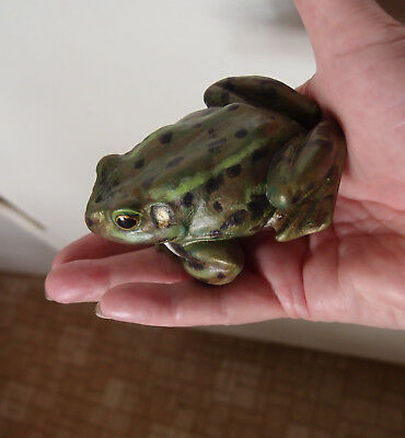 Resin Handpainted Frog~Ooak~ Beautifuly Realistic And Life Size By C Ingram~Cute
