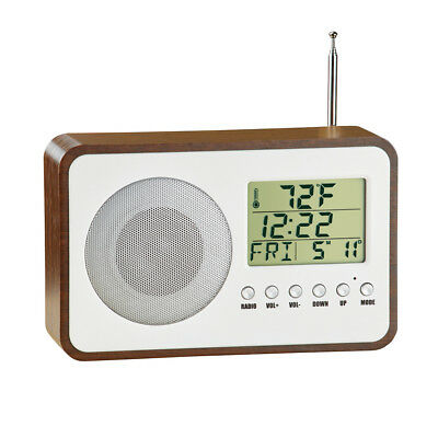 Radio Alarm Clock with Temperature and Calendar, Battery Backup, Vintage Style