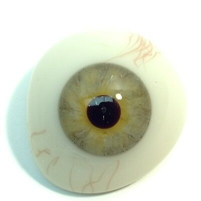 Light Green Antique Vintage Prosthetic Glass Eye