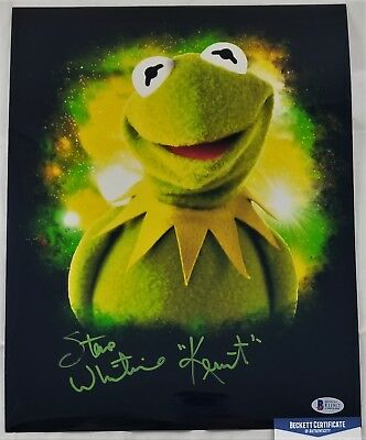 Steve WHITMIRE SIGNED 11x14 Photo Autograph BECKETT BAS COA 17 KERMIT THE FROG
