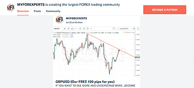 Forex Expert Signals For Everyone!!!