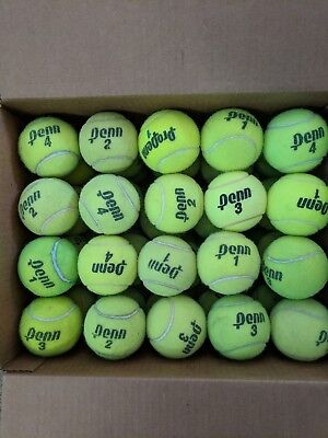 Tennis Balls Used 70+ count great for dog toy or walker, chair, table feet,