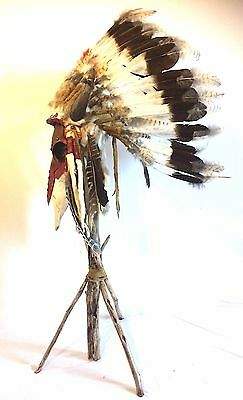 Sacred Buffalo Painted Scull and Horned War Bonnet. Reduced Price Limited!