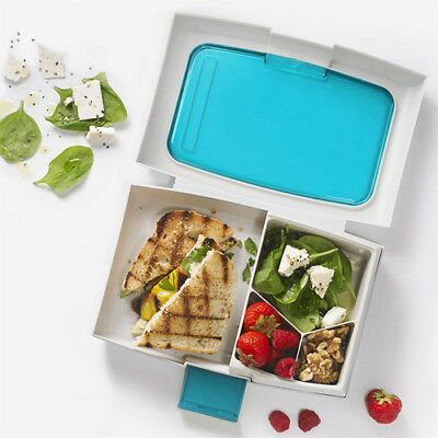 Fuel Bento Lunchbox Lunch Box: 4 Section School and Picnic Food Container