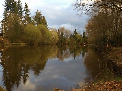 Carp Fishing Lake in Lower Normandy France