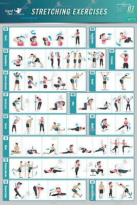 Stretching Exercise Poster BodyBuilding Guide Fitness Gym Chart