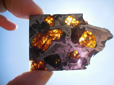 AFFORDABLE / STUNNING 21.7 gram ESQUEL PALLASITE METEORITE, Highly translucent