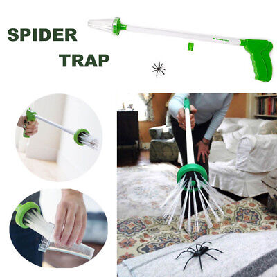 The Buzz Spider Catcher - Critter Insect Bug Humane Friendly Trap Tool UK