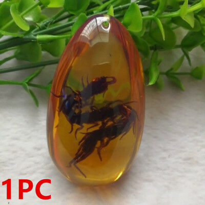 1 PC Yellow Burmite Amber Insects Stone Real Centipede Pendant Necklace New