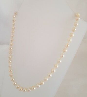 A modern Cultured Pearl necklace/ choker .14 ct yellow gold navette shaped clasp