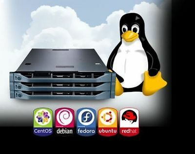 LIMITED OFFER LINUX VPS,Virtual private server, Full Root,Unlimited Bandwidth!