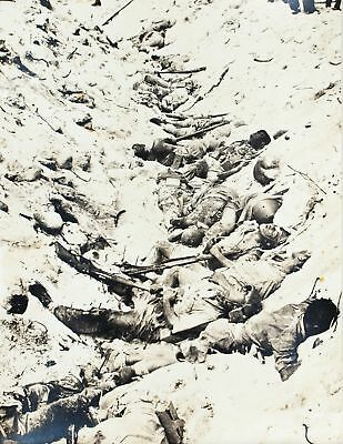 WWII Mass Suicide of Japanese Troops Pacific Island Photo Print