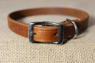 Economy Leather Pet Collar