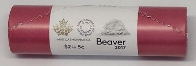2017 Canada Full Roll of Beaver 5 Cent Nickels - Classic Traditional Unreleased