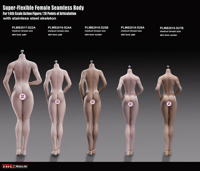 1/6 Phicen S24A PLMB2018-S24A Female Nude Body stand 278mm Pale Medium Breast