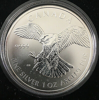 Kanada 5 Dollar 2014 1 OZ Feinsilber 999/- Wanderfalke Birds Of Prey