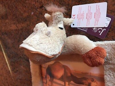 """*NEW* Baby or Child's Photo Frame, SUPER SOFT Toy Stuffed Camel, 6.5""""x8.5"""" CUTE!"""