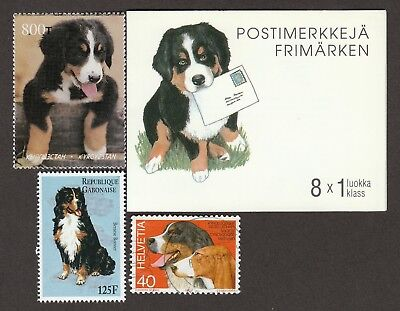 BERNESE MOUNTAIN DOG ** Int'l Dog Stamp Collection **Unique Gift Idea**