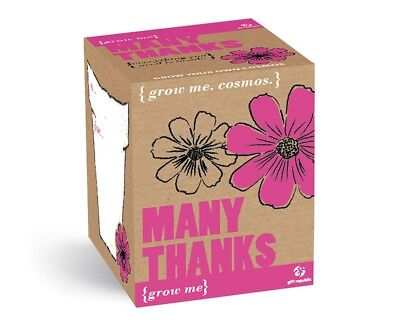 PLANTS SET MANY THANKS TO COSMOS FLOWER SEEDS 4 Pieces Grow Me Box