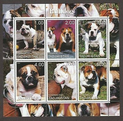 ON SALE!!  ENGLISH BULLDOG ** Int'l Dog Stamp Collection **Great Gift Idea**