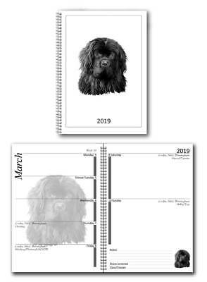 Newfoundland 2019 Small Dog Show Diary with Championship Show Dates