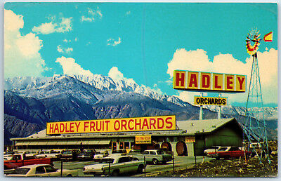 Hadley's Fruit and Nut Orchards Cabazon California Store Mountain Cars Postcard