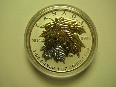 2014 Reverse Proof $5 Gold Plated Maple Leaves SML from fractional set 1oz .9999