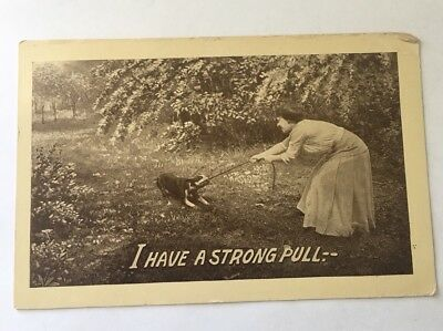 Old Postcard Circa 1913 I Have A Strong Pull—Tag Of War Dog And Lady Standard Sz