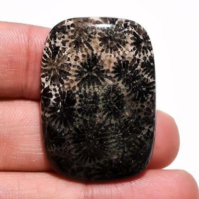 46.1 Ct Natural Moroccan Black Fossil Coral Radiant Cabochon Gemstone 35X25X6 Mm