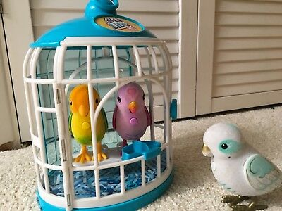 Little live pets 3 bird and cage